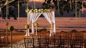 weddings_main_05
